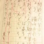 小1宿題【日記】こうやって書きました!